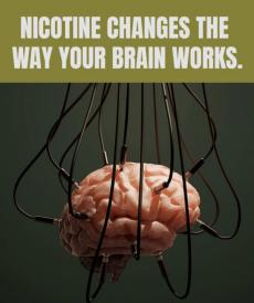 Nicotine changes the way your brain works. Brain with many wires plugged into it